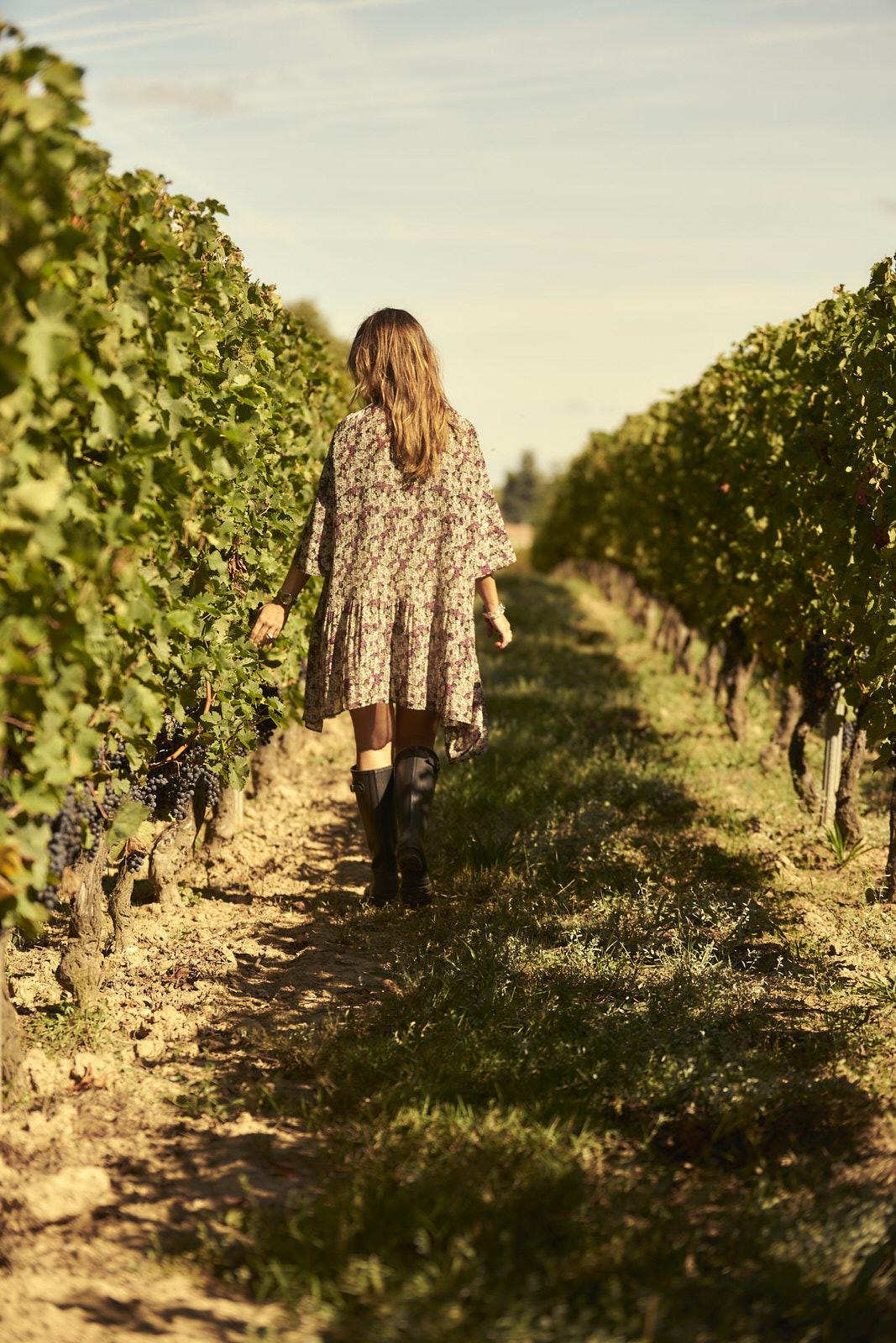 Reportage photo - Domaine viticole 14